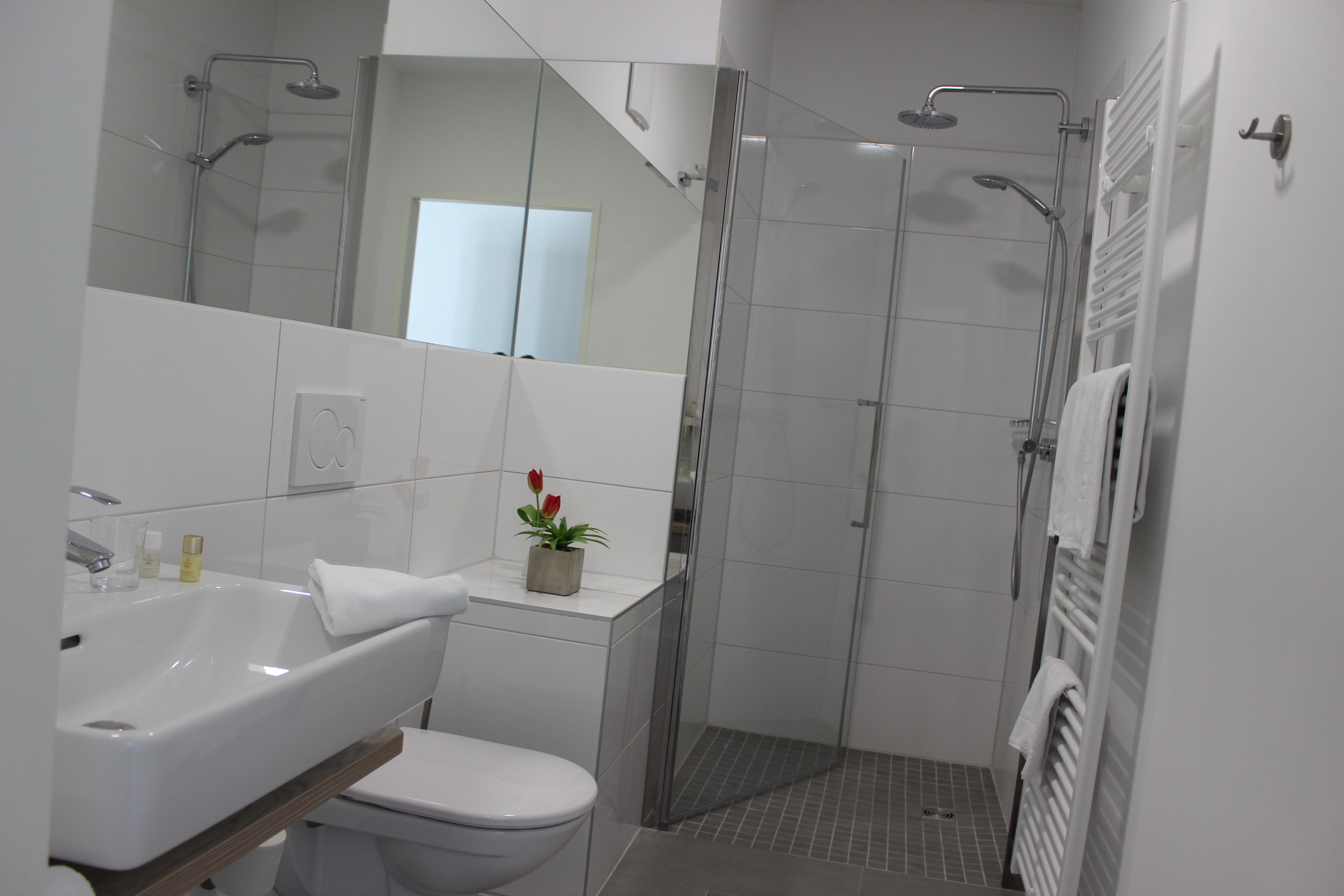 Badezimmer im Minihotel, Wachbecken, WC und Dusche, Spiegel
